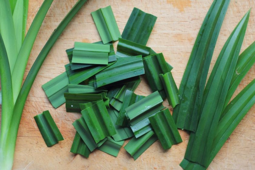 Pandan-leaves-used-in-Southeast-Asian-cooking